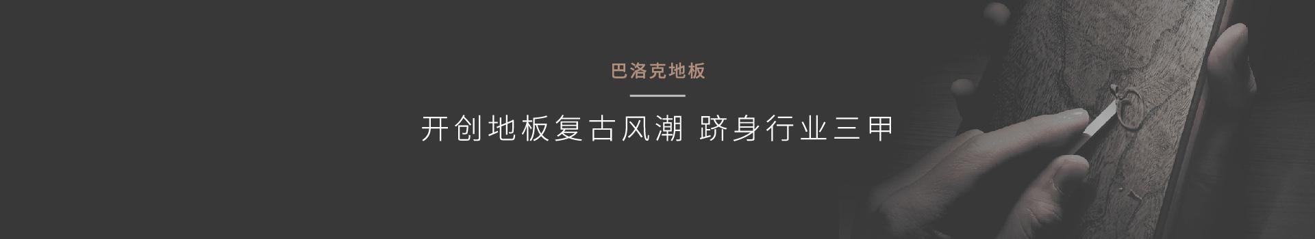 上海品牌策划公司策划巴洛克地板外贸转内销案例鼠标划过效果