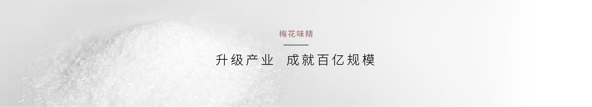 营销策划公司梅花味精营销咨询公司创新行业创造红色传播符号案例